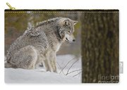 Timber Wolf In Snow Carry-all Pouch