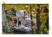 Timber Wolf On Rock Carry-all Pouch