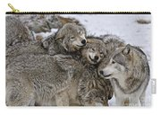 Timber Wolf Pictures 120 Carry-all Pouch