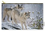 Timber Wolf Pictures 1417 Carry-all Pouch