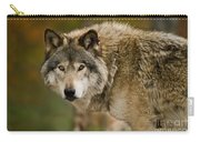 Timber Wolf Pictures 1629 Carry-all Pouch