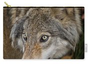 Timber Wolf Pictures 1660 Carry-all Pouch