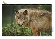 Timber Wolf Pictures 262 Carry-all Pouch