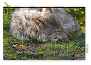 Timber Wolf Pictures 42 Carry-all Pouch