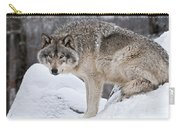 Timber Wolf Pictures 683 Carry-all Pouch