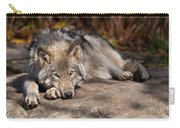 Timber Wolf Pictures 945 Carry-all Pouch