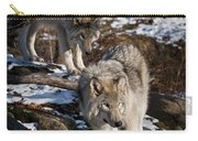 Timber Wolf Pictures 957 Carry-all Pouch by World Wildlife Photography