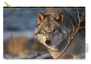 Timber Wolf Pictures 981 Carry-all Pouch