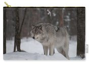 Timberwolf Series 4 Carry-all Pouch