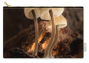 Tiny Toadstools Carry-all Pouch