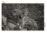 Tioga Pass Road Sepia Carry-all Pouch