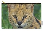 Tk0524, Thomas Kitchin Serval. Huge Carry-all Pouch