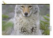 Tk0607, Thomas Kitchin Coyote In Spring Carry-all Pouch