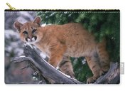 T.kitchin 15274d, Cougar Kitten Carry-all Pouch