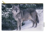T.kitchin, 19821c Gray Wolf, Winter Carry-all Pouch