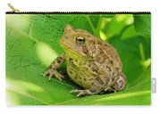 Toad Sitting Carry-all Pouch
