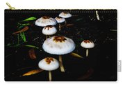 Toadstools V4 Carry-all Pouch by Douglas Barnard