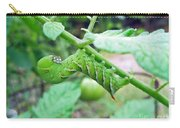Tobacco Hornworm - Manduca Sexta - Six Spotted Hawkmoth Carry-all Pouch