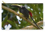 Toco Toucan Amazon Jungle Brazil Carry-all Pouch
