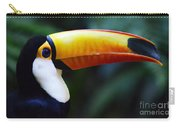 Toco Toucan Brazil Carry-all Pouch