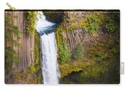 Toketee Falls Carry-all Pouch