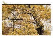 Tombs Under Oaktree Carry-all Pouch