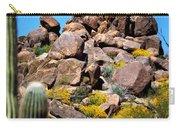 Tonto Saguaro Rocks 10189 Carry-all Pouch