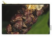 Tortoise Beetle Mother Shields Carry-all Pouch