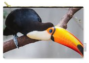 Toucan Ramphastos Toco Sitting On Tree Branch In Tropical Fore Carry-all Pouch