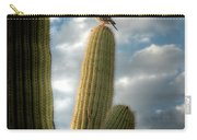 Touch The Sky  Carry-all Pouch