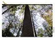 Towering Timber Carry-all Pouch