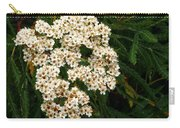Toyon Bush Carry-all Pouch