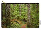 trail to Lower Lewis Falls Carry-all Pouch