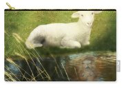 Transformation Lamb Or Lion Carry-all Pouch