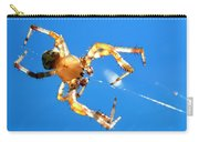 Trapeze Spider Carry-all Pouch by Christina Rollo