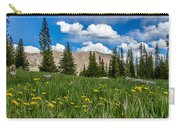 Trappers Lake Meadow Carry-all Pouch