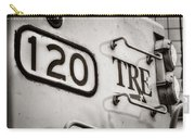 Tre 120 Carry-all Pouch by Joan Carroll