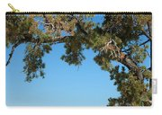 Tree Arch Carry-all Pouch