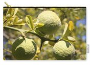 Tree Fruit Carry-all Pouch