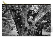Tree Giant Carry-all Pouch