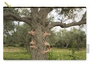 Tree Hugging Green Ecological Concept  Carry-all Pouch