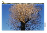 Tree In Afternoon Sunlight Carry-all Pouch