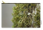 Tree Moss Closeup 2013 Carry-all Pouch