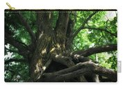 Tree On Pierce Stocking Scenic Drive Carry-all Pouch by Michelle Calkins