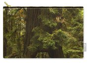 Tree Redwood Ca 7 Carry-all Pouch