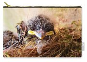 Tree Swallow Fledglings Carry-all Pouch