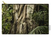 Tree Trunk And Ferns Carry-all Pouch
