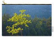 Tree With Yellow Leaves In Acadia National Park Carry-all Pouch