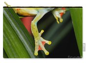 Treefrog Foot Carry-all Pouch