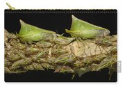 Treehoppers And Nymphs Mindo Ecuador Carry-all Pouch